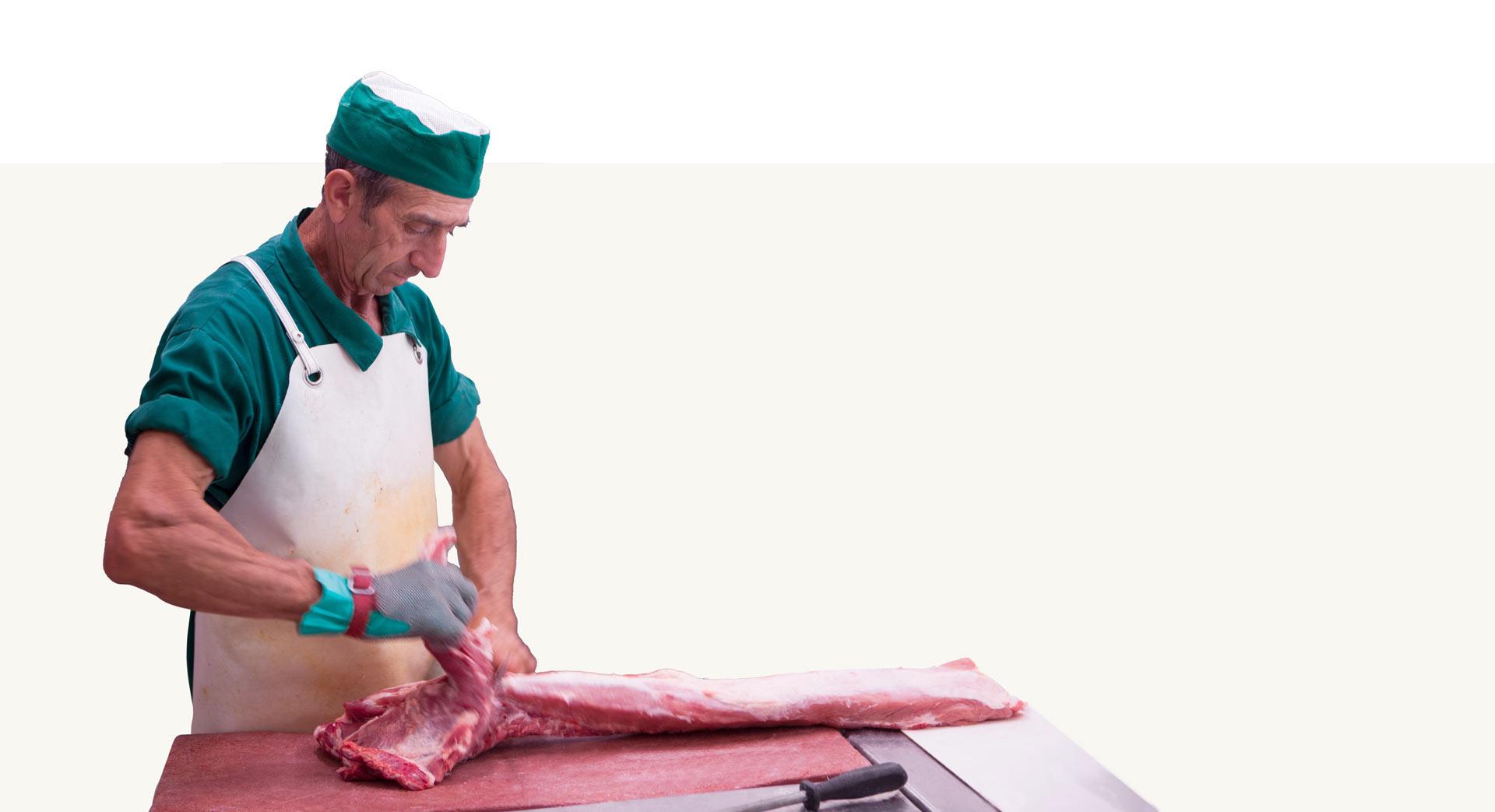 carnavi-carnicero